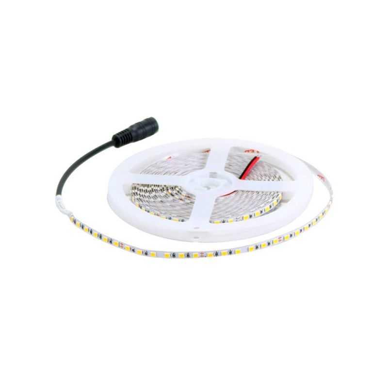 Tira LED 5mm SMD 2835 12W/m 24V IP20 5m