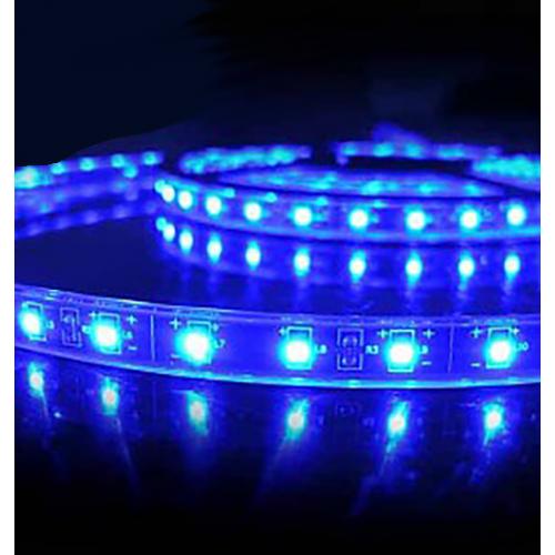 Tira LED SMD 5730 10 W/m AZUL 230V IP67 1 metro