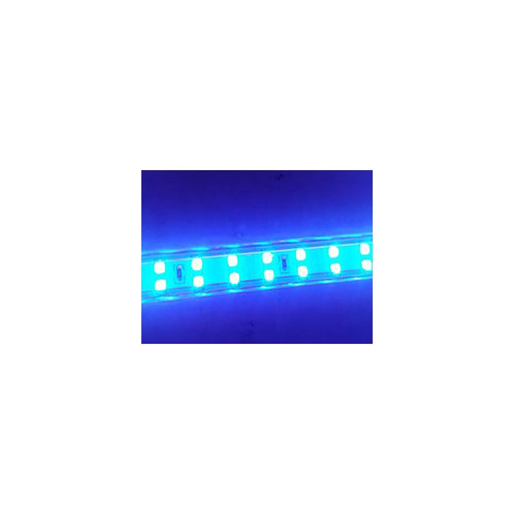 Tira led smd 2835 13 w m azul 230v ip67 5 metros - Tira led 5 metros ...