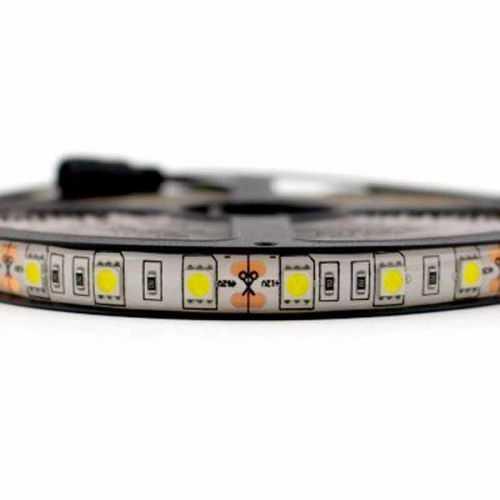 Tira LED SMD 5050 14,4 W/m 12V IP65 1 metro